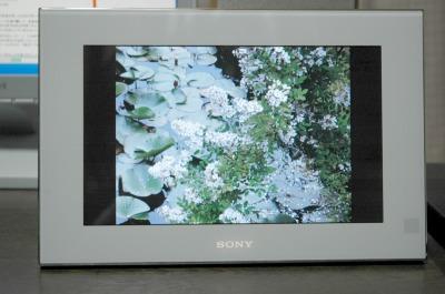 DPF-V900-1.jpg