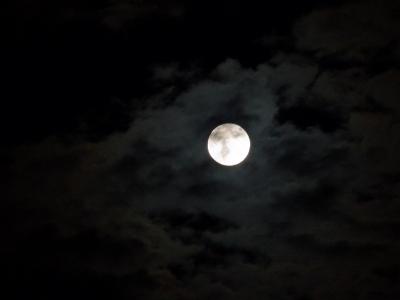 十六夜2010_09_23-07.jpg